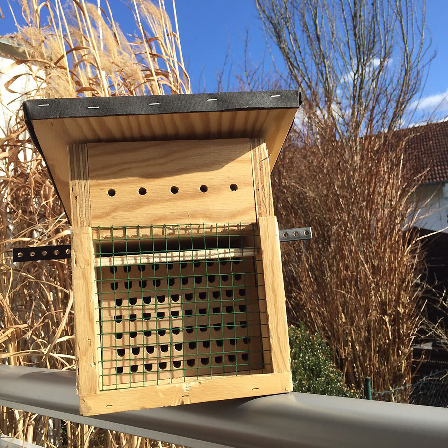 Nistkasten der Mauerbienen