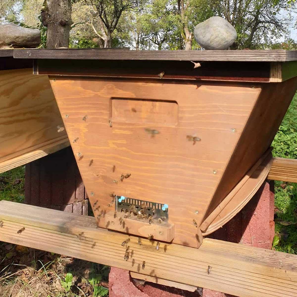 Bienenbarke-Selvers