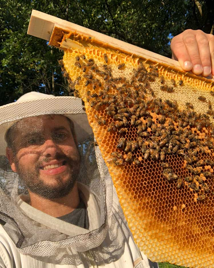 Imker mit Wabe Bienenbarke