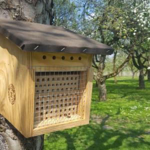 BeeWild-Nistkasten