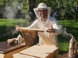Bienenbarke-Wabenhalter
