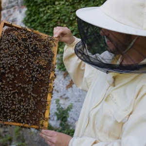 Burgimker-mit-Bienen